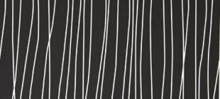 P201 Черная линия/Stripped Black